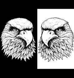 Hawk head line vector