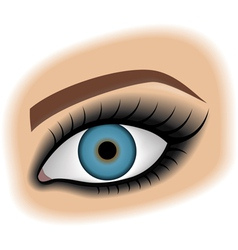 smoky eyes vector image