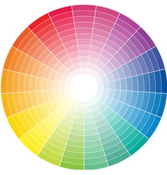 Color whell to white vector image vector image