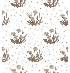 hand drawn dandelion background vector image vector image
