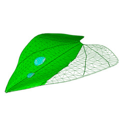 Leaf with drops vector