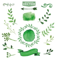 Watercolor green decorbranchesfloral set vector
