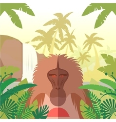 Baboon on the jungle background vector