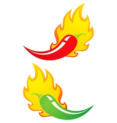 Chili fire vector image vector image