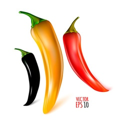 Pepper Icon Set vector image
