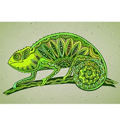 Picture of colorful chameleon lizard in graphic vector