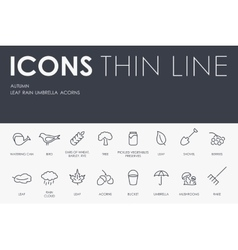 Autumn thin line icons vector