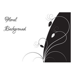 black and white floral frame vector image vector image