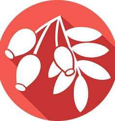 Red Rosehip Icon vector image vector image