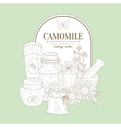 Vintage sketch with camomile cosmetics vector