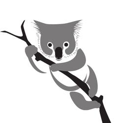 koala vector image