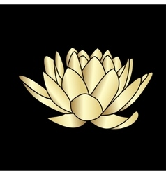 Lotus flowers icon vector
