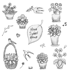 Hand drawn indoor plants flowers in vases and vector