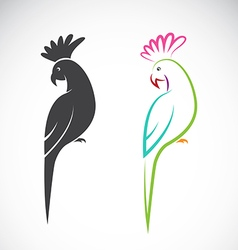 image of a parrot design vector image