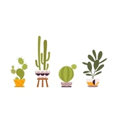 Set of four green floor plants in retro pots vector