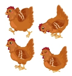 Cartoon chicken in in four poses animals vector image
