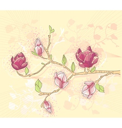 abstract background with magnolia branch vector image vector image