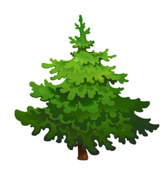 Pine tree drawing vector