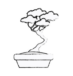 pot plant tree decoration garden sketch vector image
