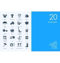 Set of blue hamster library autumn icons vector