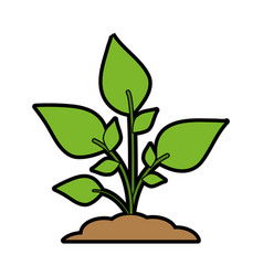 Green plant sprout icon imag vector
