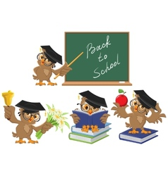 Set owl teacher back to school vector