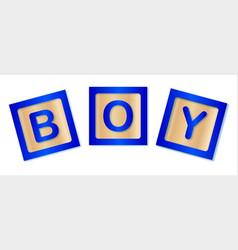 Boy blocks vector