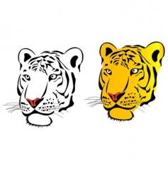 danger tiger vector image vector image