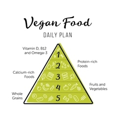Food pyramid healthy vegan eating infographic vector