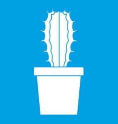Cactaceae cactus icon white vector