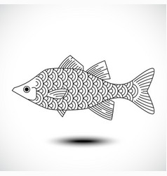 Fish isolated on a white background vector