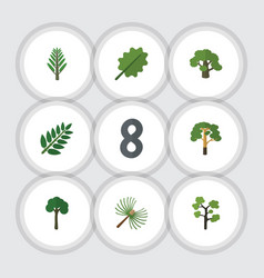 Flat icon nature set of rosemary jungle vector