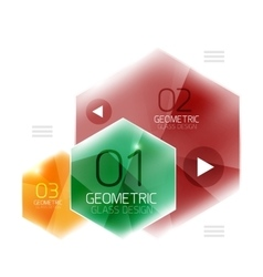 Hexagon option infographics vector image