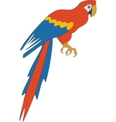 Parrot color 03 vector image vector image