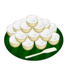 Pile of Coconut Custard on Banana Leaf vector image