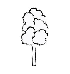 Tree foliage trunk organic natural sketch vector