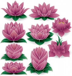 Lotus set vector
