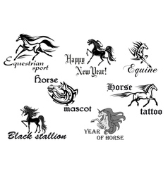 Black horse stallions mascots vector image vector image