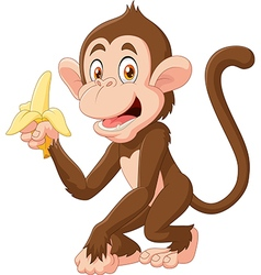 Cartoon funny monkey holding banana isolated vector