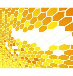 orange cell banner vector image