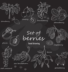 Set of garden berries on dark background vector image