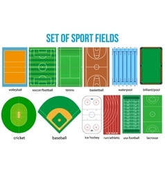 Set of most popular sample sport fields vector image vector image