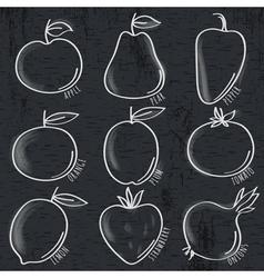 Set of organic vegetable and fruit on blackboard vector