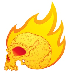 skull in flames vector image