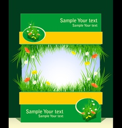 Frame with grass and field flowers vector