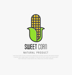 thin line icon of corn for logo vector image