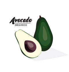 Cartoon avocado ripe green fruit vegetarian vector