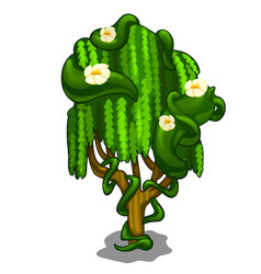 Exotic tree with creeping leaves and flowers vector