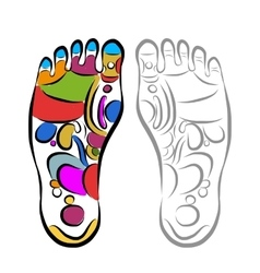 Foot massage reflexology sketch for your design vector