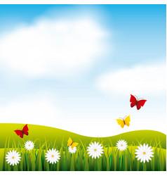 garden flowers and butterflies vector image